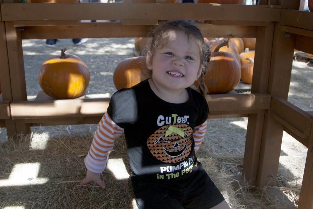 pumpkinpatch2014_06