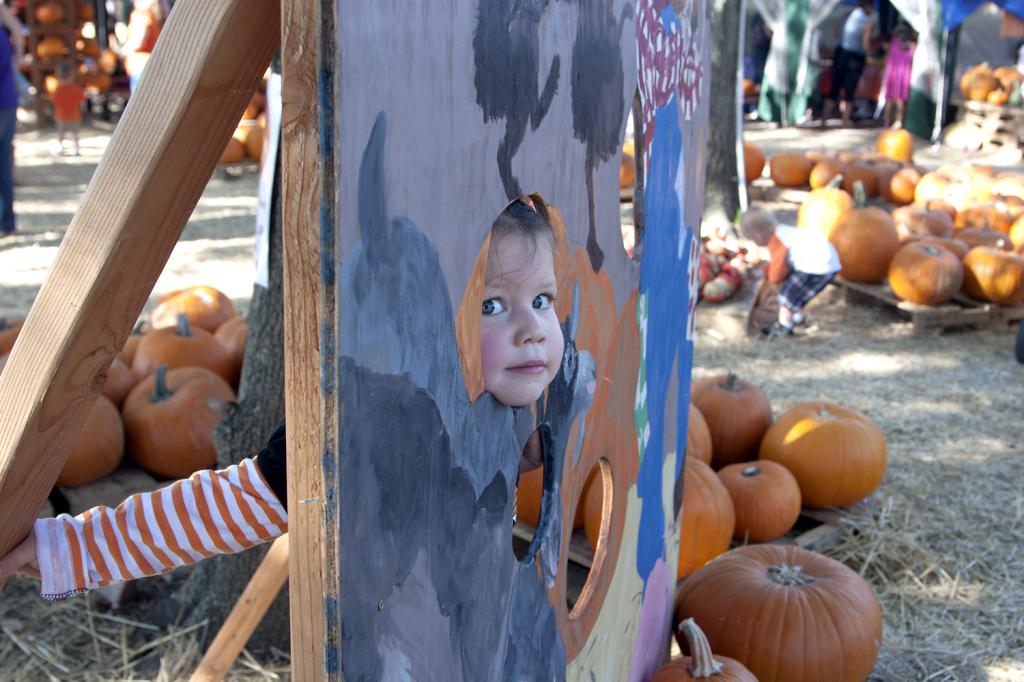 pumpkinpatch2014_13